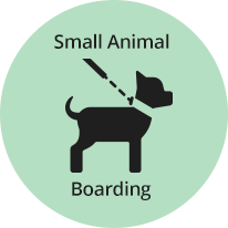 Small Animal Boarding