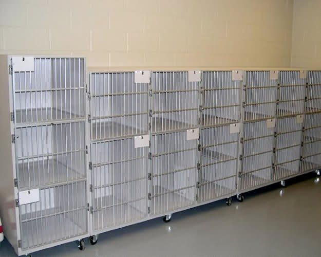 cat-cages2-buddy-center-cf15347b00