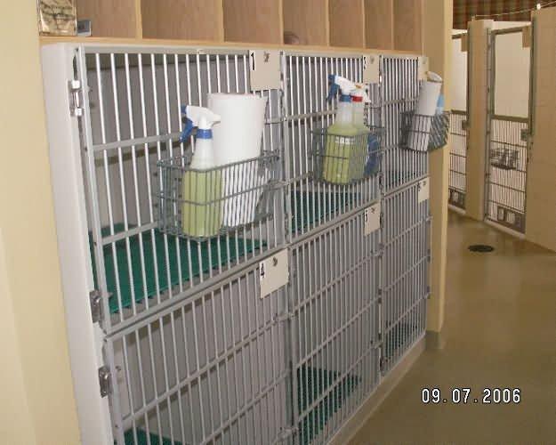 cat-cages2-country-inn-sab-8e8e9a4886