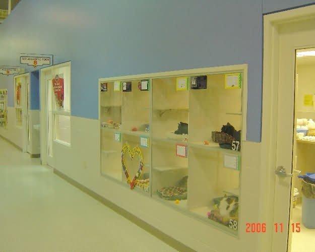 cat-cages2-nebraska-hs-f650f56018