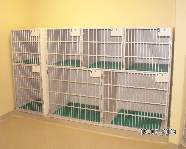 cat-cages4-country-inn-sab-f121262c5c