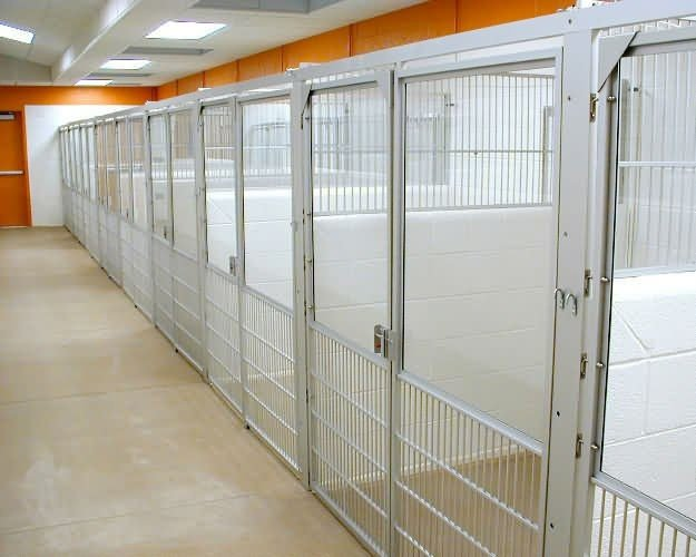 kennel-runs-arizona-hs-9124e136e2